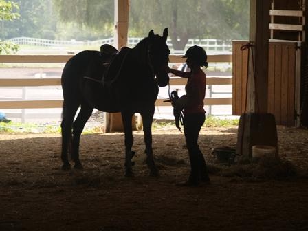 horseback riding summer camp northeast