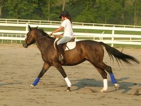 horseback riding summer camp for teenagers