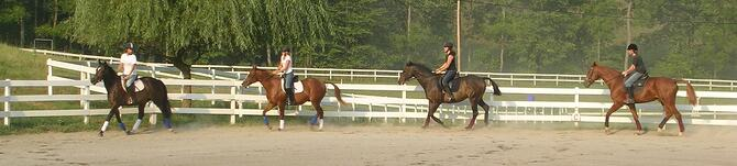 equestrian-summer-camps-for-teens