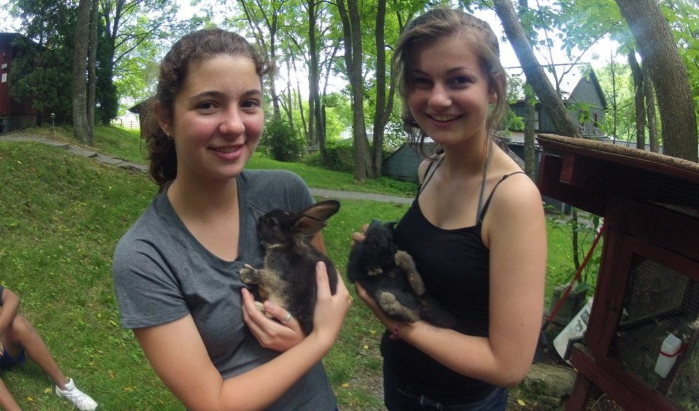 Summer-camps-for-teens-bunnies