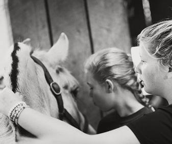 Equestrian-summer-camps