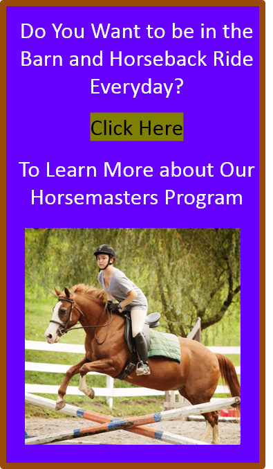 sleepaway-horseback-riding-summer-camps-pa.jpg.png